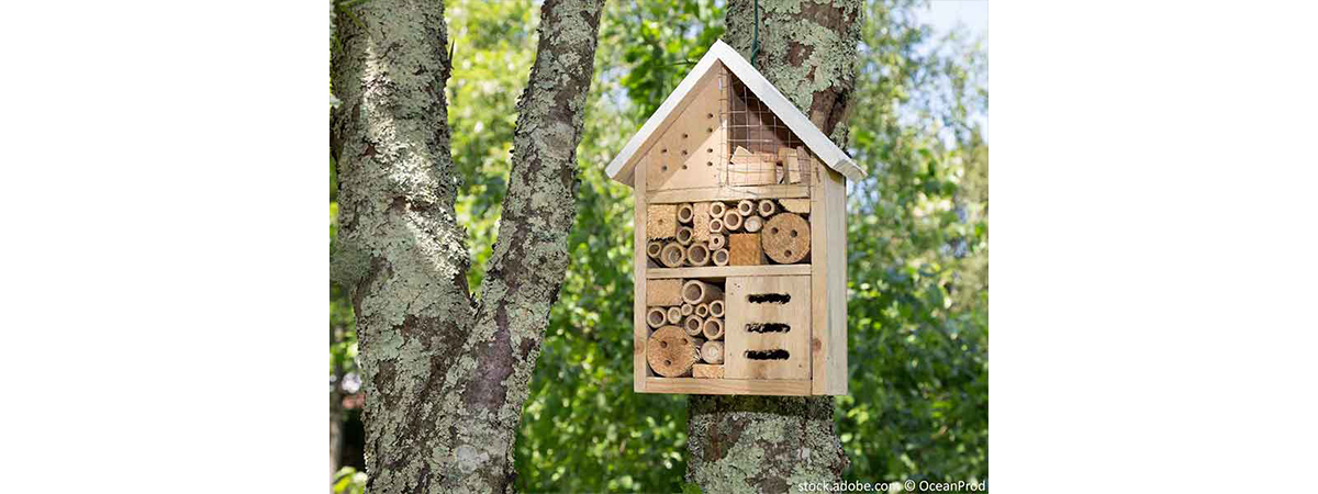 Ein_Insektenhotel_im_Garten_stock-adobe_neu