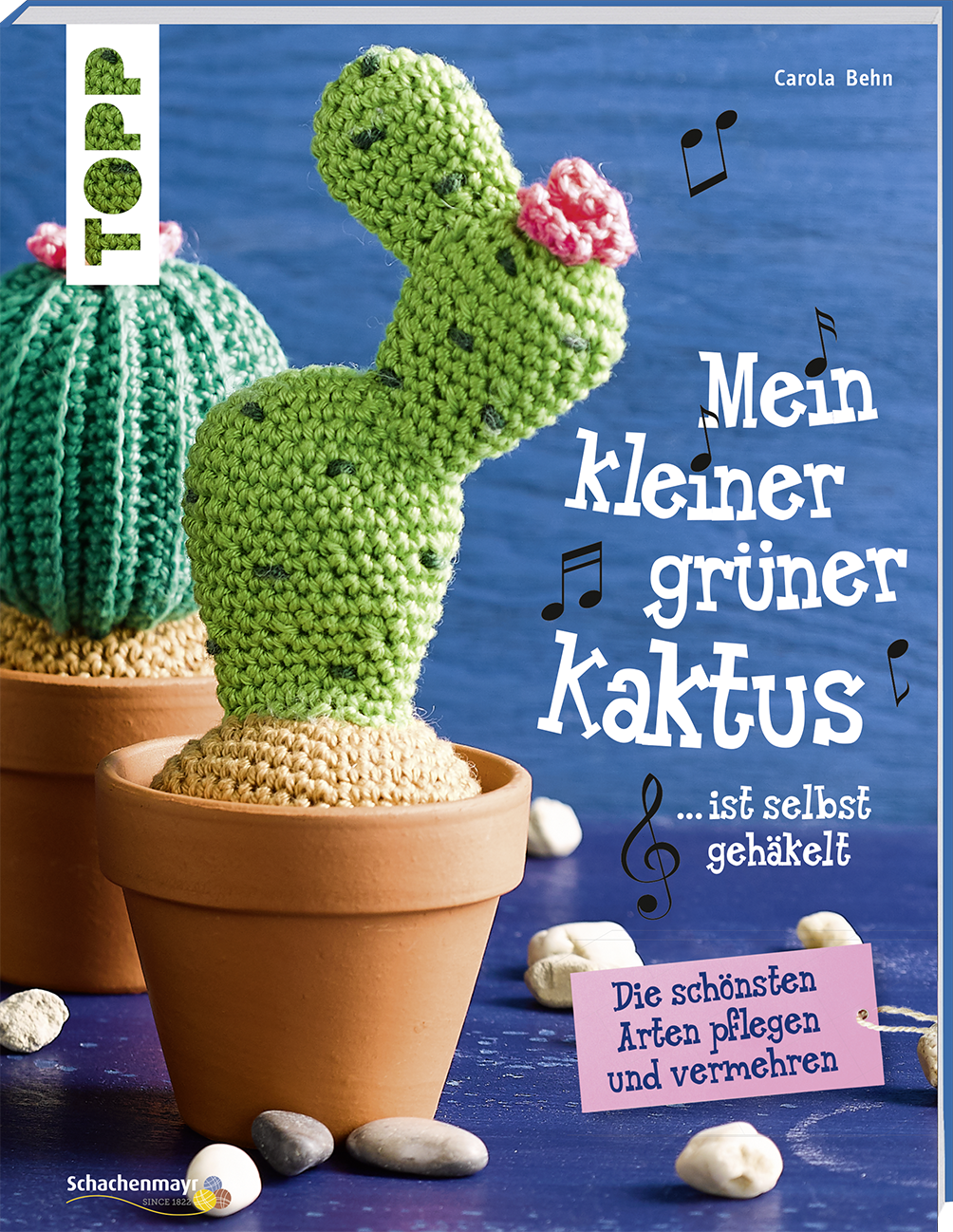 Mein Kleiner Gruner Kaktus Ist Selbst Gehakelt Kreativ Kompakt