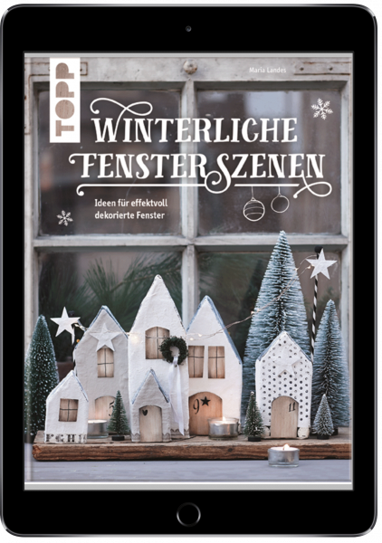 Winterliche Fensterszenen (eBook)