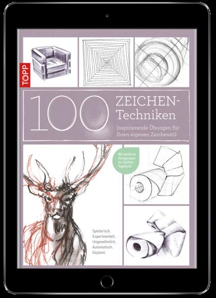 100 Zeichentechniken (eBook)
