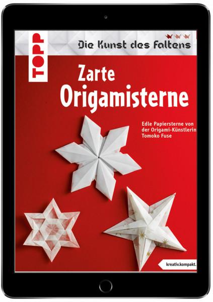 Zarte Origami-Sterne (kreativ.kompakt.) 40900