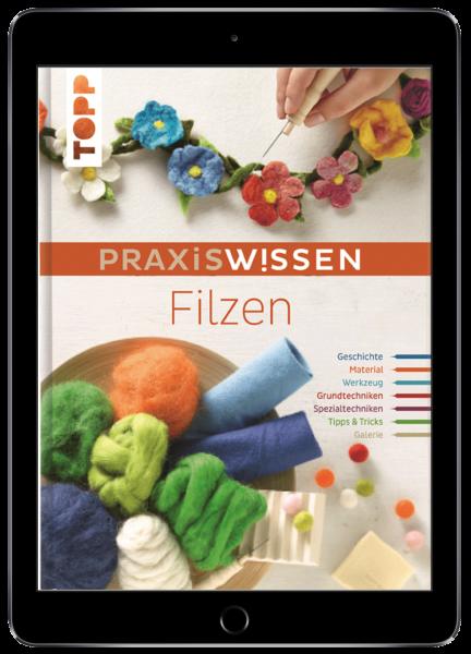 PraxisWissen Filzen (eBook)