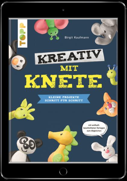 Kreativ mit Knete (eBook)