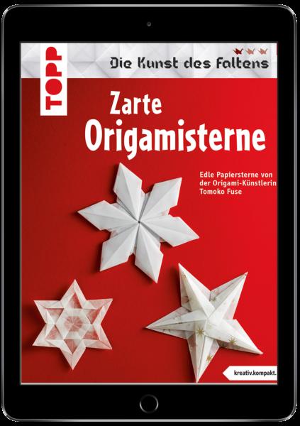 Zarte Origami-Sterne (eBook)